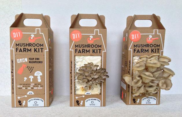 Mushroom Farm Kit 3